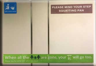 squattingpanairplanetosingapore